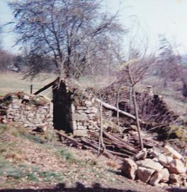 Toit à cochons - Mars 1992