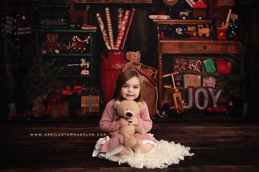 Christmas Mini Session - Santa's Workshop