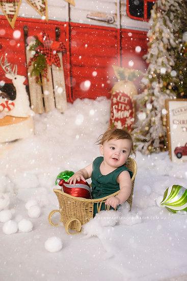 Christmas Photo Experience WAGGA 2021