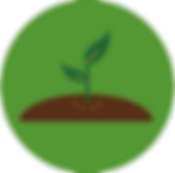 Nitrogen icon (1)_edited.png