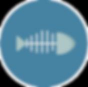 fish+icon-1320190750701712165_512_edited