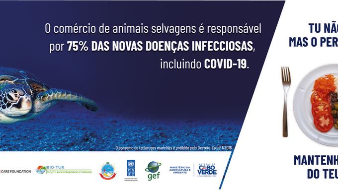 Projeto Biodiversidade lança campanha nacional para combater o consumo ilegal de espécies marinhas p