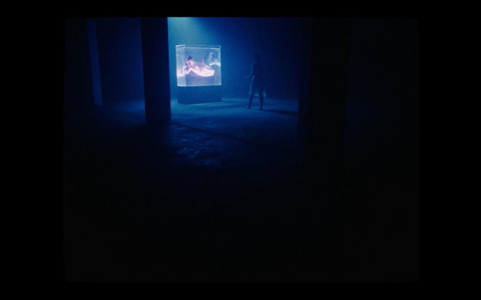 Captura de pantalla 2021-02-04 a las 19.