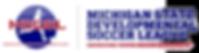 MSDSL logo.png