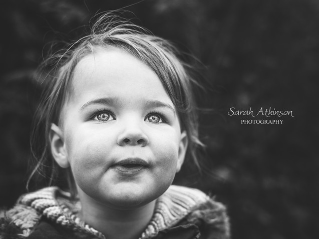 Willits b-w portrait 2016 (1 of 1).jpg