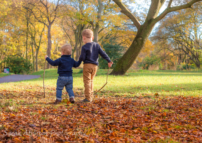 Brothers  Leaves