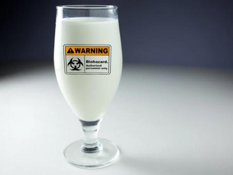 Молоко: пастеризация, туберкулез и болезни ЖКТ.
