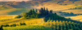 tuscany_default.6922.jpg