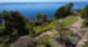St_Michaels_Mount_-_Coastal_Garden.png