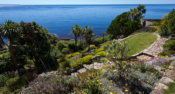 St_Michaels_Mount_-_Coastal_Garden.png