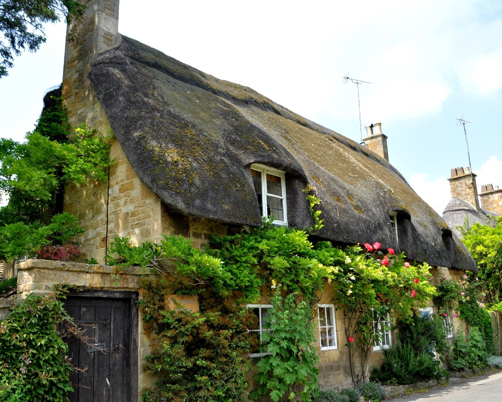 thatched1.jpg