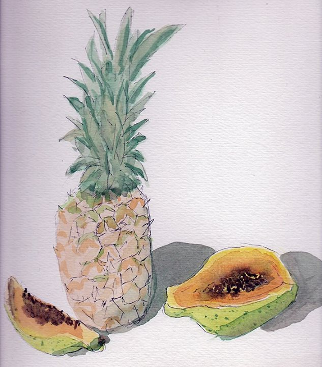 Pineapple water color study