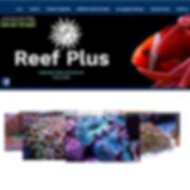 reefplus.jpg
