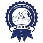 Module 1 Certification Logo.jpeg
