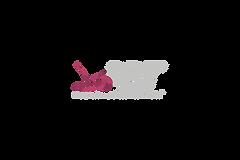 PBT logo (pink on dark background)_PNG_l