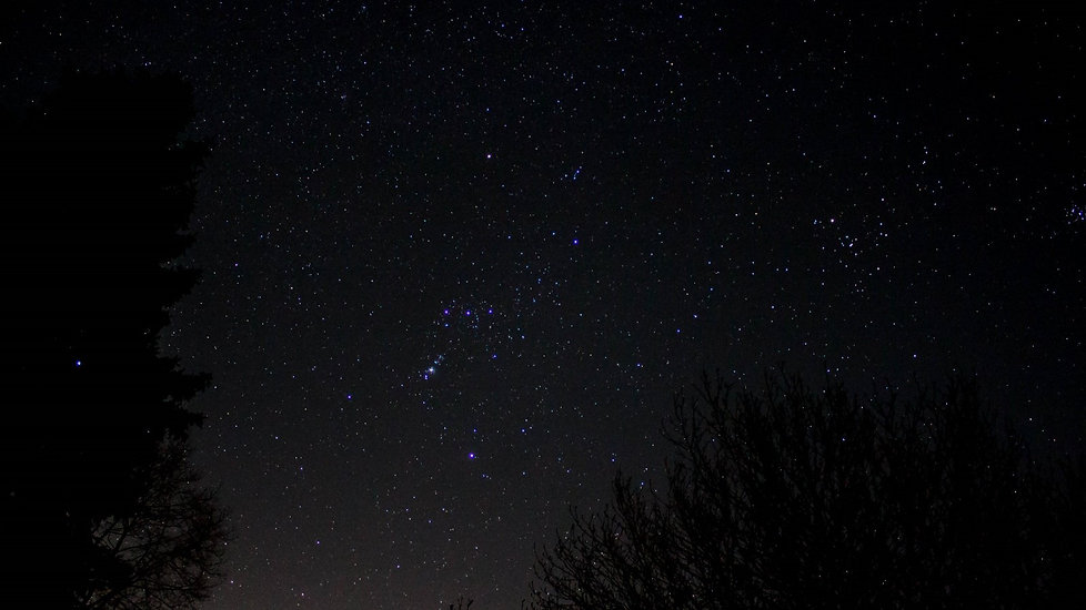 Orion from driveway.jpg