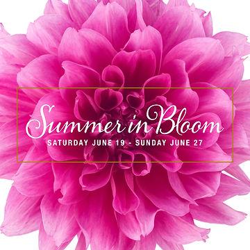FO210412 Summer in Bloom FB Avatar.jpg