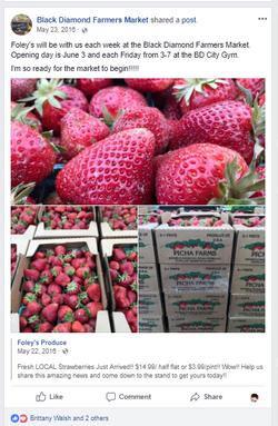 Foley's berries