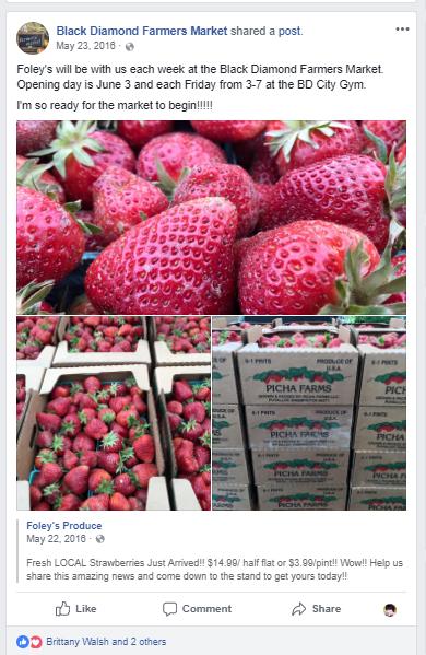 Foley's berries, Farmers Market Social