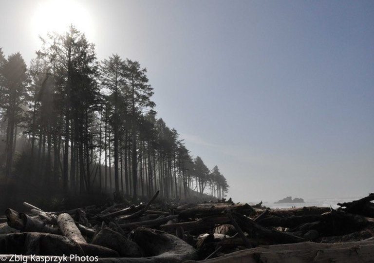 Rialto Beach, Washington coast.jpg