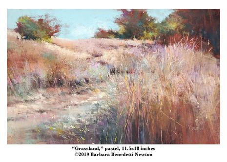 Grassland, pastel, 11.5x18.jpg