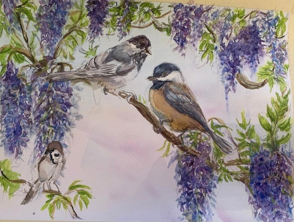 Watercolor   15.5 x11 inch    Wisteria a
