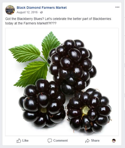 The Blackberry Blues, Farmers Market Social