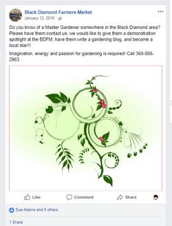 looking for a gardener