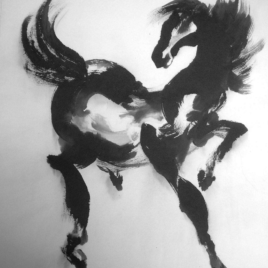 Black stallion,