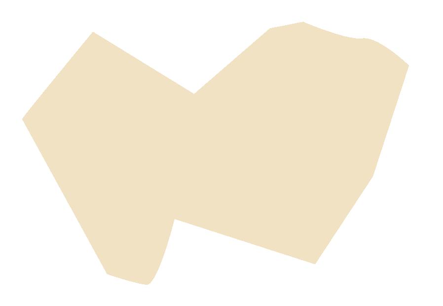 mancha amarilla-01.png