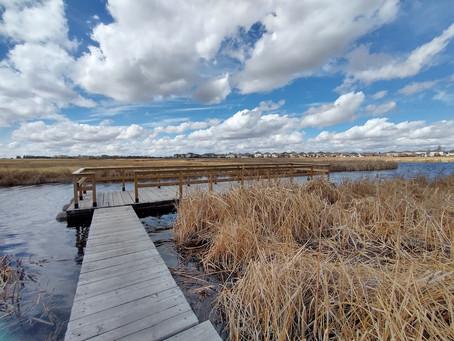 Wandering Wednesdays - McKell Wascana Conservation Park