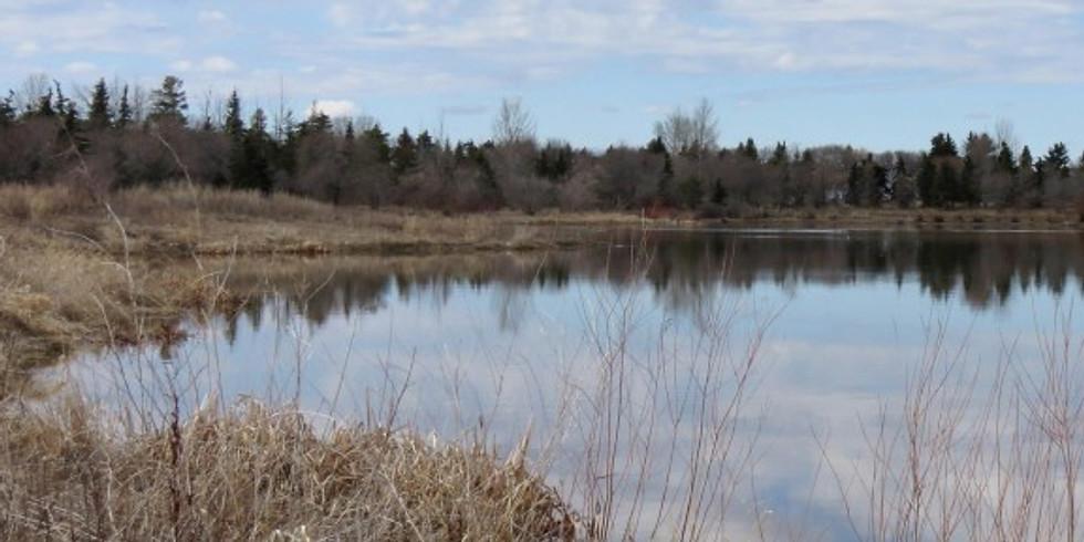 CANCELLED Fishes of Alberta/ Saskatchewan Field Identification
