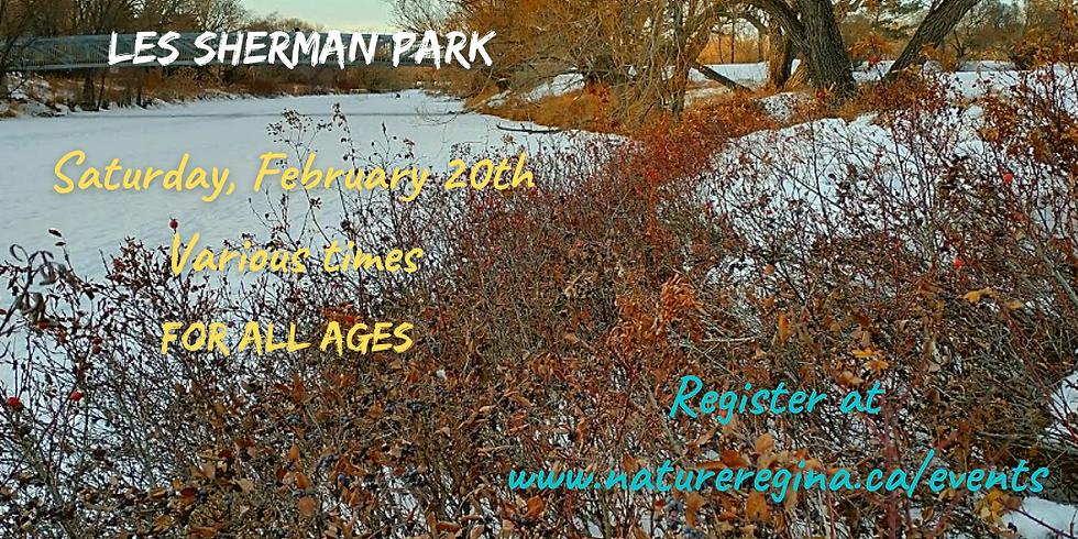 Get Outside! Free Public Event - Les Sherman Park 10:00 a.m.
