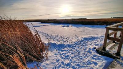 Wandering Wednesdays - Winter Edition McKell Wascana Adventure Park