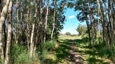 Choose Your Own Adventure at White Butte Trails
