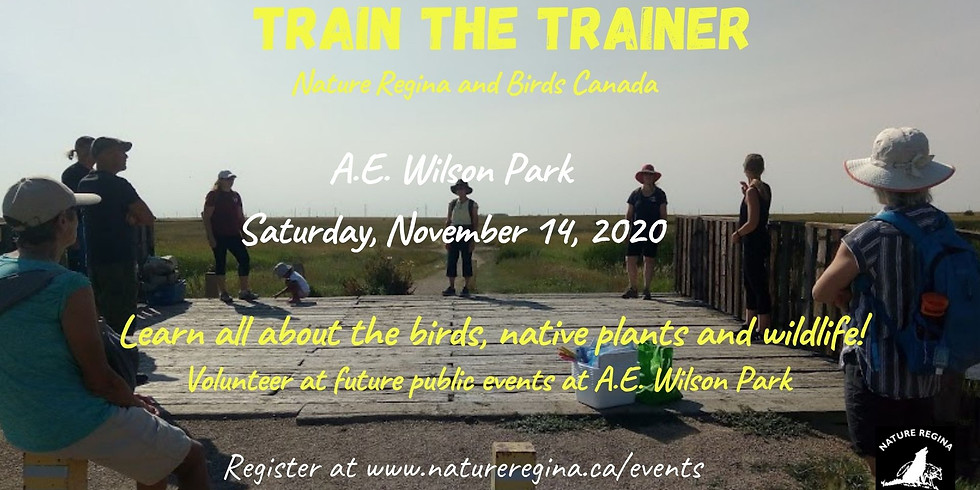 Train the Trainer 11 am to 12 pm