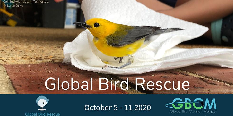 Global Bird Rescue