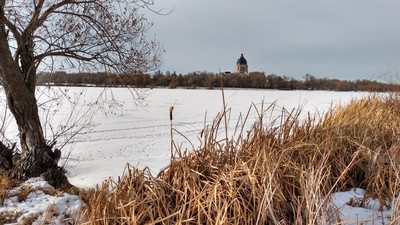 Wandering Wednesdays - Winter Edition Wascana Lake & Native Plant Garden