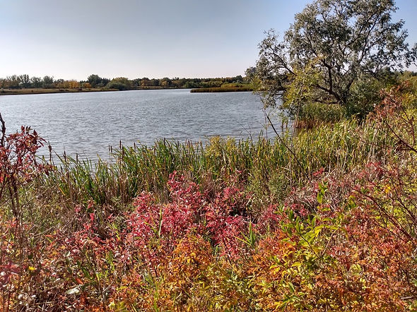 Habitat Conservation Area.jpg