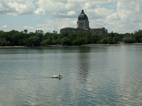 Walking Wascana with Kids!