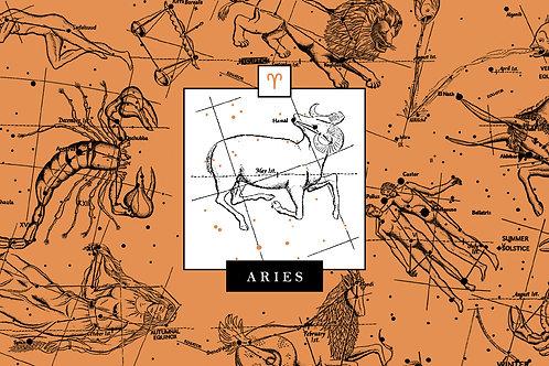 Clase de Aries