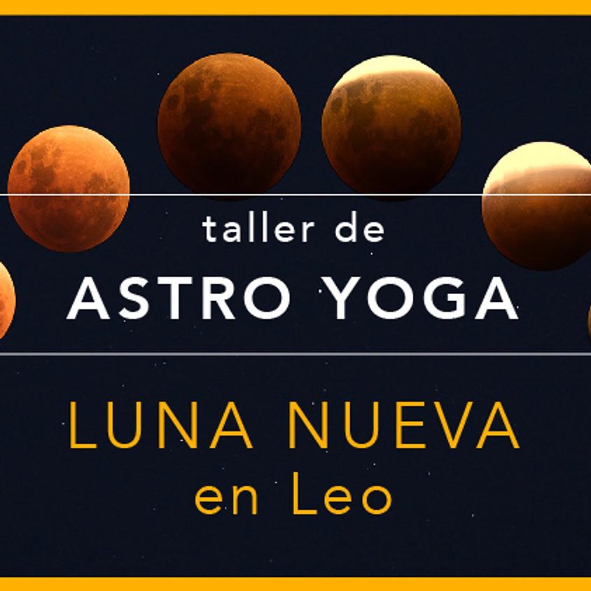 Luna nueva en Leo