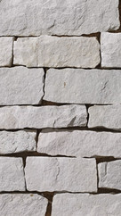 Ohio White-Ledge