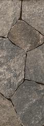 Liberty Hill-Mosaic