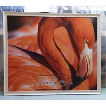 Картины Фламинго