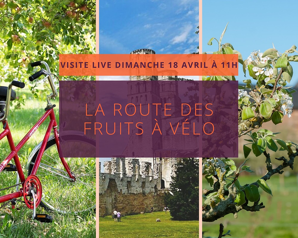Photos de la route des fruits