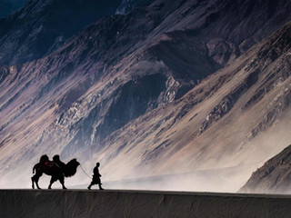 Voygr Expeditions