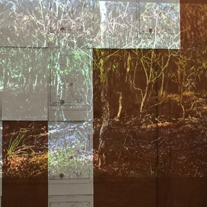 Feedback loop for drawing a projection, wardrobe, reproductions of map