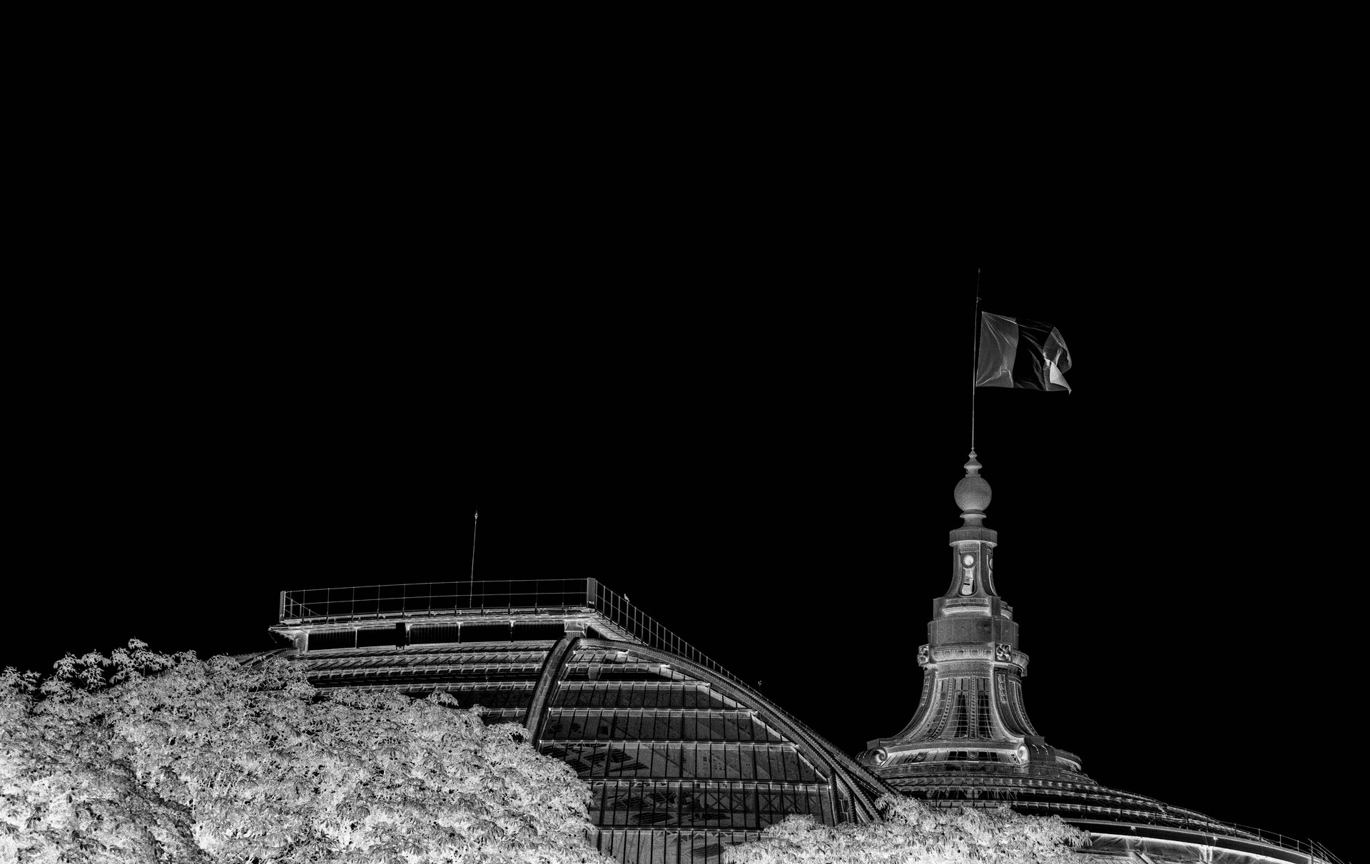 Paris - Le Grand Palais