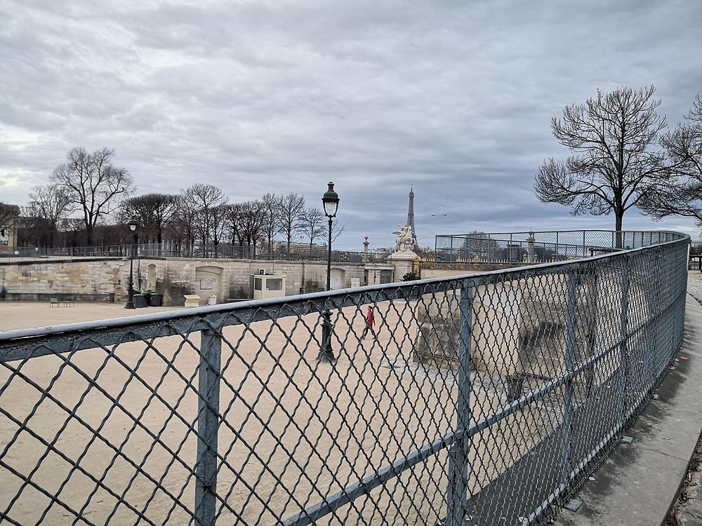 photo du jardin des tuileries prise au petit matin avec vue sur la tour eiffel - roguierphotos